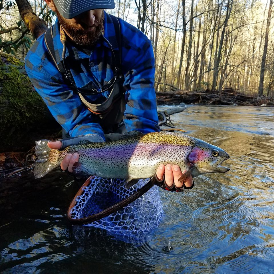 Picture of man holding a large rainbow trout while standing in a stream.